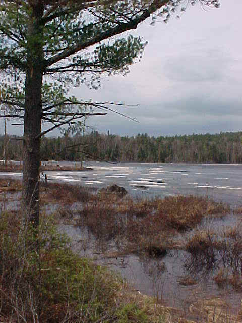 Spring at Swamper Lake, mid Gunflint Trail